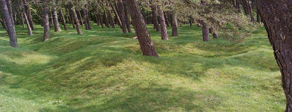 Spuren von Schützengräben der Schlacht von Vimy  im April 1917 (Frankreich, Pas-de-Calais), in der kanadische Verbände des britischen Expeditionskorps den Deutschen große Teile des Höhenzugs von Vimy abnahmen. In der Nähe befindet sich das Kanadische Nationaldenkmal Vimy. Foto: ©J. Echternkamp.