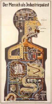 """Fritz Kahn, Der Mensch als Industriepalast, 1927. Quelle ([https://creativecommons.org/licenses/by-nc-sa/2.0/ CC BY-NC-SA 2.0]): [http://www.flickr.com/photos/44124365621@N01/4423763115/in/photolist-7JUWDR-cCehFQ-8ijGv3-ck9LXf-ck9Nnw-jiedz1-e7runz-e7xaH5-e7xaQ1-9StCRd-9SqKY2-9SqwRM-9StnXS-9Stqjf-9SqETr-9Sqsxn-9StByE-9StFyw-9SqrXX-9Styhw-amRRFm-ck9T8Y-ck9YrU-ck9QMd-ckagJQ-ck9S4d-ck9UeL-ck9KHu-ck9V7d-ck9JMu-ck9U1Q-ck9PuU-ck9Uab-ck9TCW-8Pomnt Flickr]. Die Schautafel """"Der Mensch als Industriepalast"""" von Fritz Kahn aus dem Jahr 1927 zeigt einen menschlichen Oberkörper als aufgeschnittenen Torso. Anstelle des freigelegten Einblicks in die Organe und Gewebe ist ein komplexes Ensemble technischer Anlagen zu erkennen, das durch Röhren und Schläuche miteinander verbunden ist und von einer mehrstöckigen Kontroll-, Kommando- und Kommunikationszentrale in Gestalt des Kopfes dirigiert wird. Besondere Zuspitzung erfuhr die Bildtechnik der Darstellung der Sinnesfunktionen, in denen Kahn auf die neuesten technischen Medien und Kommunikationstechnologien wie Kamera, Telefon, Radio und Film rekurrierte.  Kahns Schautafeln waren Analogiebildungen von Körper und Technik. Sie waren keineswegs eingängige Abbildungen komplizierter naturwissenschaftlicher Vorgänge, sondern vielmehr Projektionen der urbanen und industriellen Moderne in den menschlichen Körper hinein. Langfristig wirkten sie prägend auf den Stil medizinischer Abbildungen insgesamt wie auf die Werbegrafik der Zeit. Als Medien der Darstellung erschöpften sich Kahns Bildkonstruktionen nicht in der Funktion einer bloßen Illustration von Vorgängen und Zuständen, sie waren vielmehr selbst wiederum """"Akteure dieser als Hybridisierung skizzierten Konzeptualisierung"""" (Cornelius Borck).  Speziell zur Visualisierung physiologischer Funktionszusammenhänge hatte Kahn eine Bildsprache entwickelt, die den menschlichen Körper in Analogie zur industriellen und urbanen Moderne in der damaligen Zeit positionierte. Dieses Bildprogramm wurde im De"""