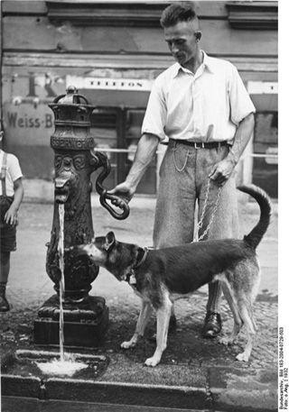 """Hund und Mensch am Brunnen, Berlin 1932. Original-Bildunterschrift Scherl: """"Im Kampf gegen die Hitze. Der vierbeinige Hausgenosse erhält am Brunnen eine Erfrischung 1932 25107-32"""". Fotograf: unbekannt, Quelle: [https://commons.wikimedia.org/wiki/File:Bundesarchiv_Bild_183-2004-0729-503,_Berlin,_Hund_und_Herrchen_am_Brunnen.jpg Wikimedia Commons] / [http://www.bild.bundesarchiv.de/archives/barchpic/search/_1491321589/?search%5Bform%5D%5BSIGNATUR%5D=Bild+183-2004-0729-503 Bundesarchiv Bild 183-2004-0729-503], Lizenz: [https://creativecommons.org/licenses/by-sa/3.0/de/deed.en CC-BY-SA 3.0]"""