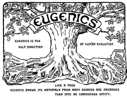 "Logo der zweiten Internationalen Eugenik-Konferenz, 1921 in New York: ""Eugenics is the Self Direction of Human Evolution"". Quelle: [https://commons.wikimedia.org/wiki/File:Eugenics_congress_logo.png Wikimedia Commons], Lizenz: public domain"